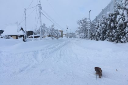 十勝 大雪